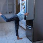 プラナリアの飼育!冷蔵庫で管理ができる?