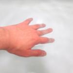 スジエビの飼育方法!最適な水温ってどれくらい!?