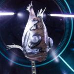 見た目が不気味!深海魚ハチェットフィッシュとは!?
