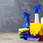 スジエビの水槽の掃除方法と頻度について!