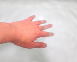 スジエビ 飼育 水温